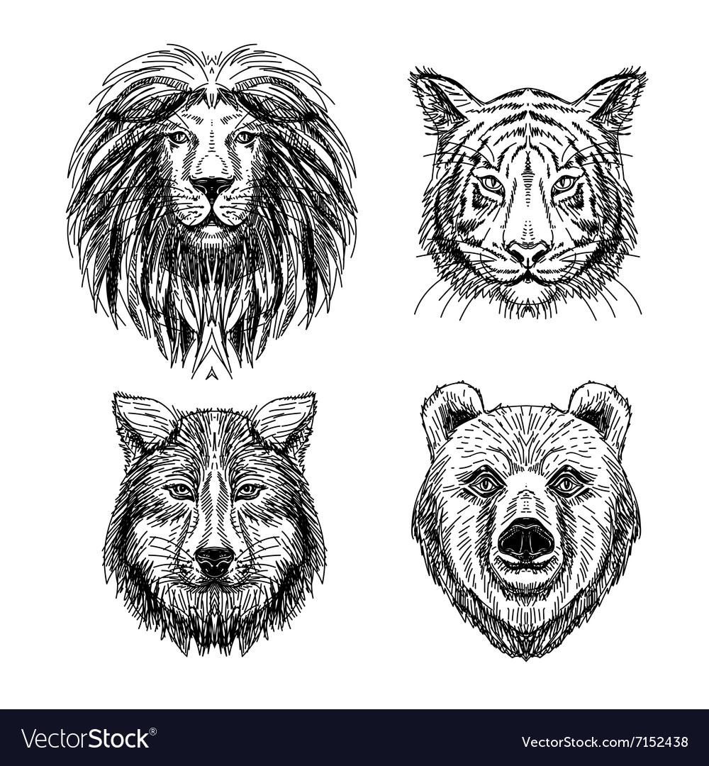 Set of hand drawn animal Sketch