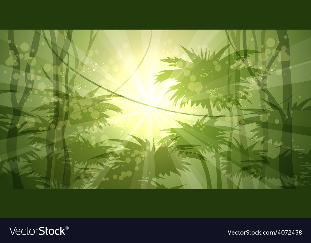 Wild Forest vector image