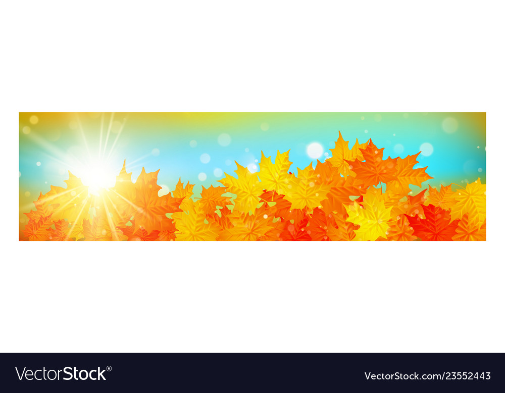 Autumn banner with colorful leaves on gold bokeh