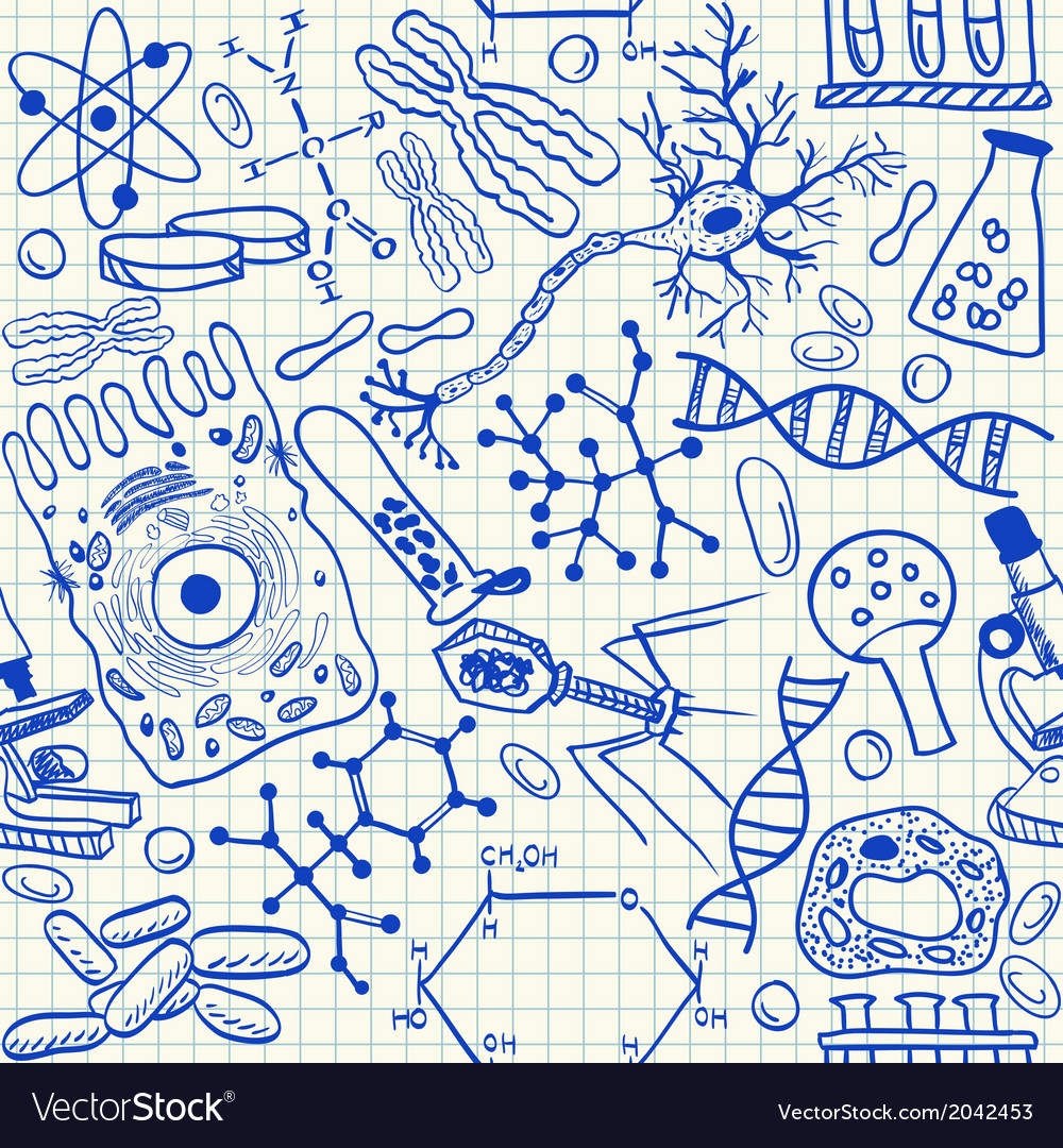 Biology doodles on school squared paper vector image