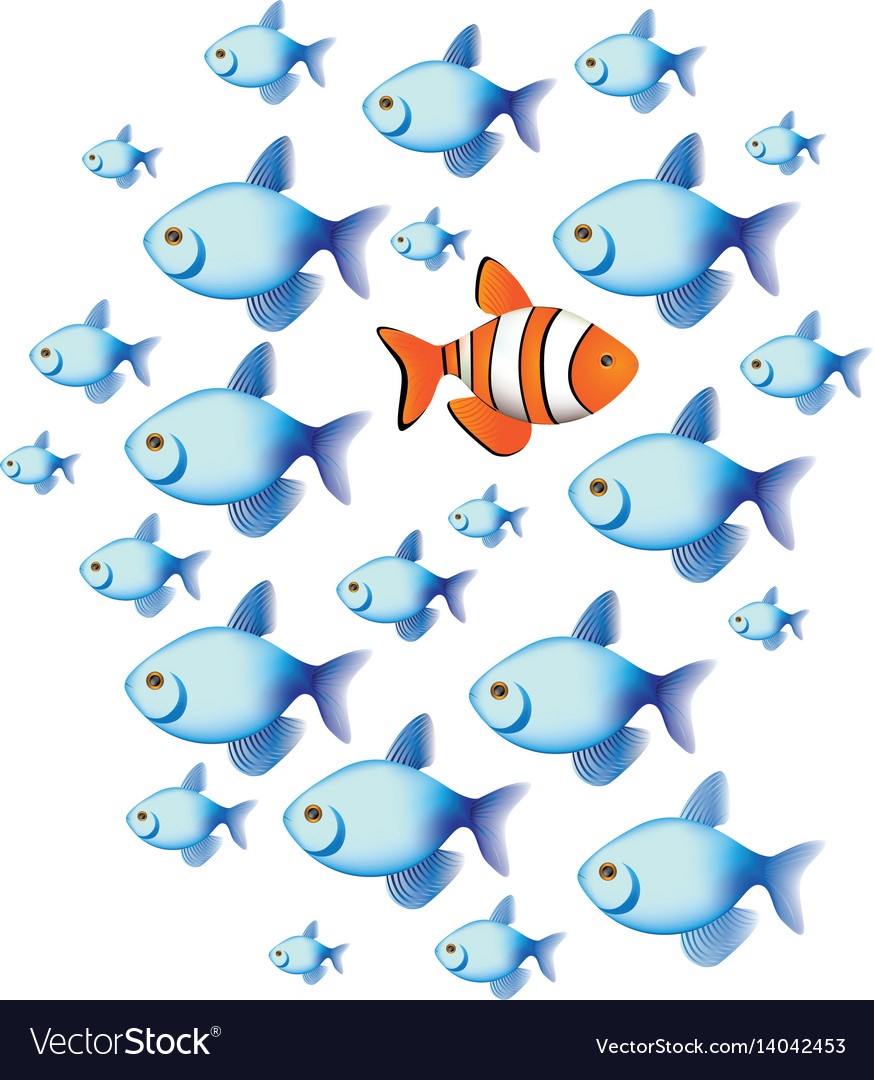 Colorful set collection fish aquatic animal with