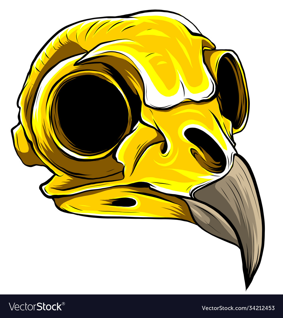 Gold eagle skull on white background