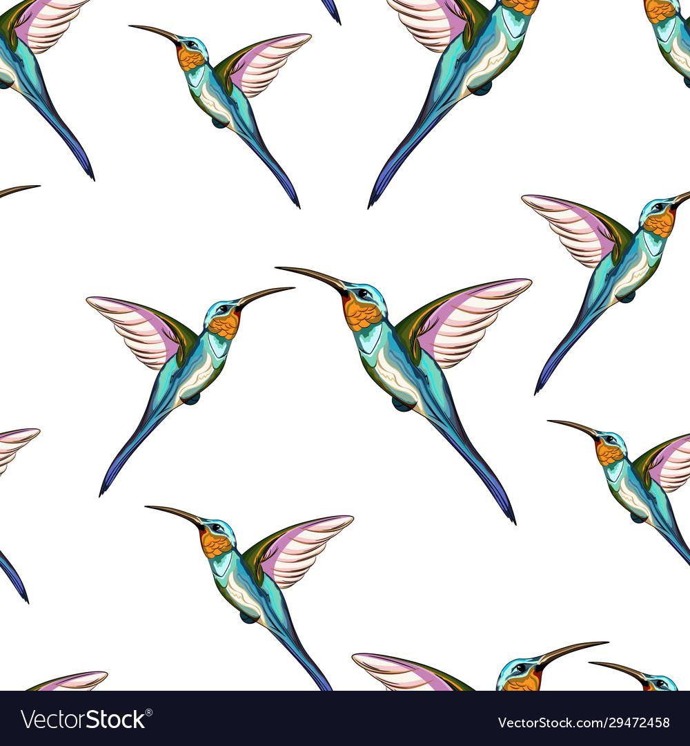 Pattern exotic tropical humming bird