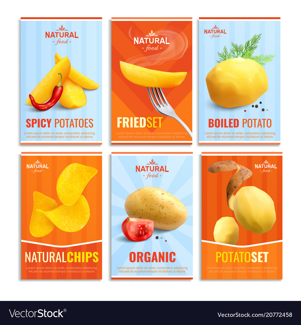 Potato realistic cards set vector image