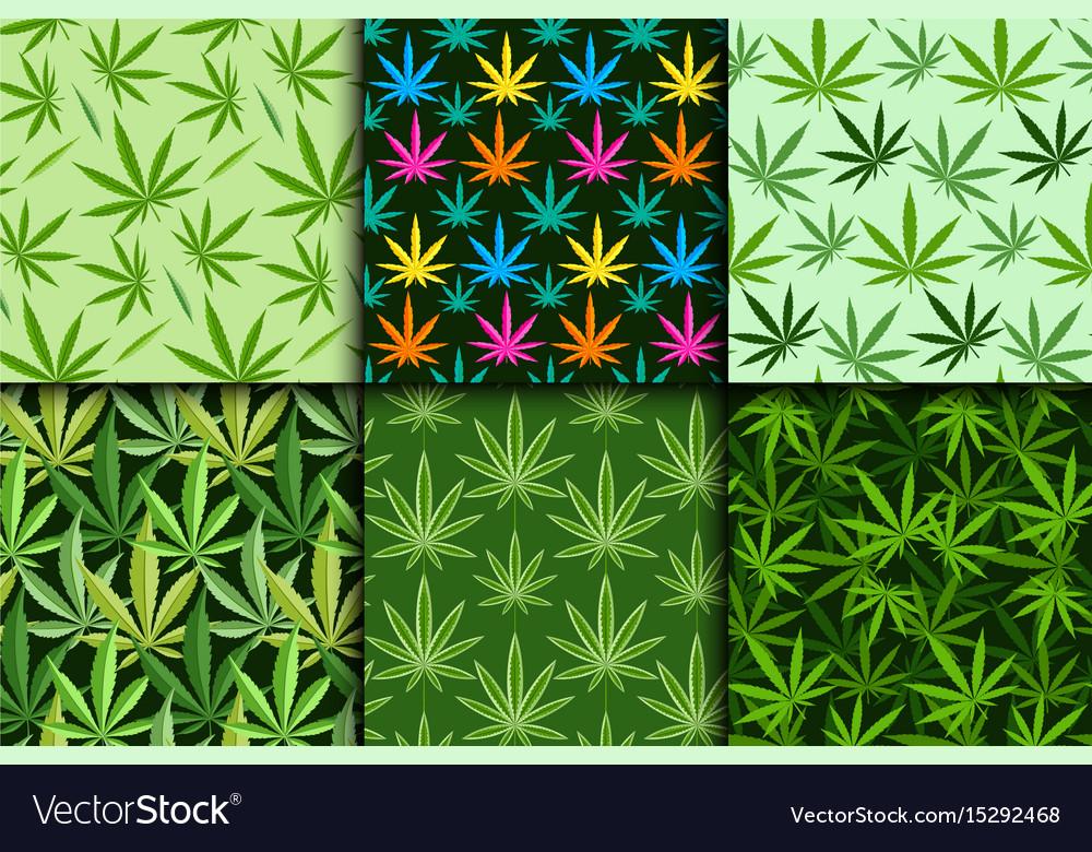 Green marijuana background