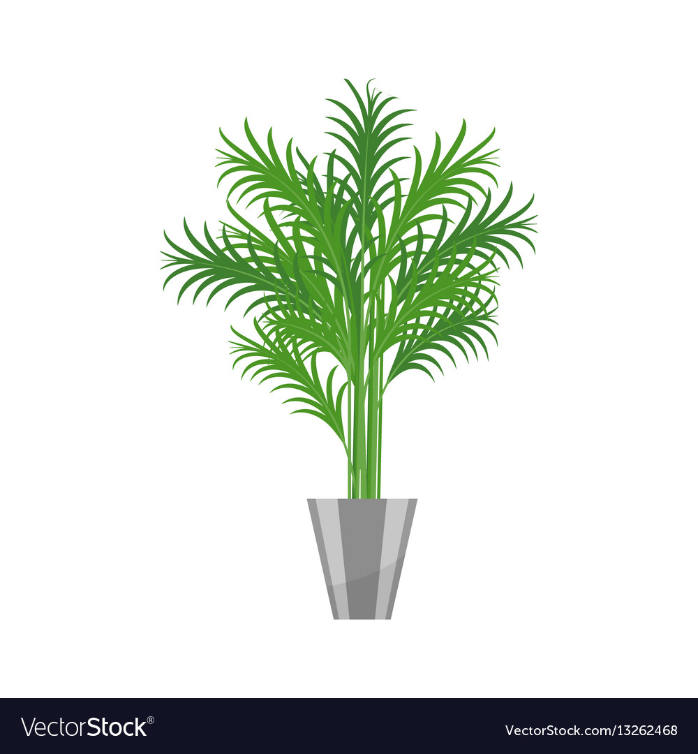 Palm treehouse plant realistic icon for interior