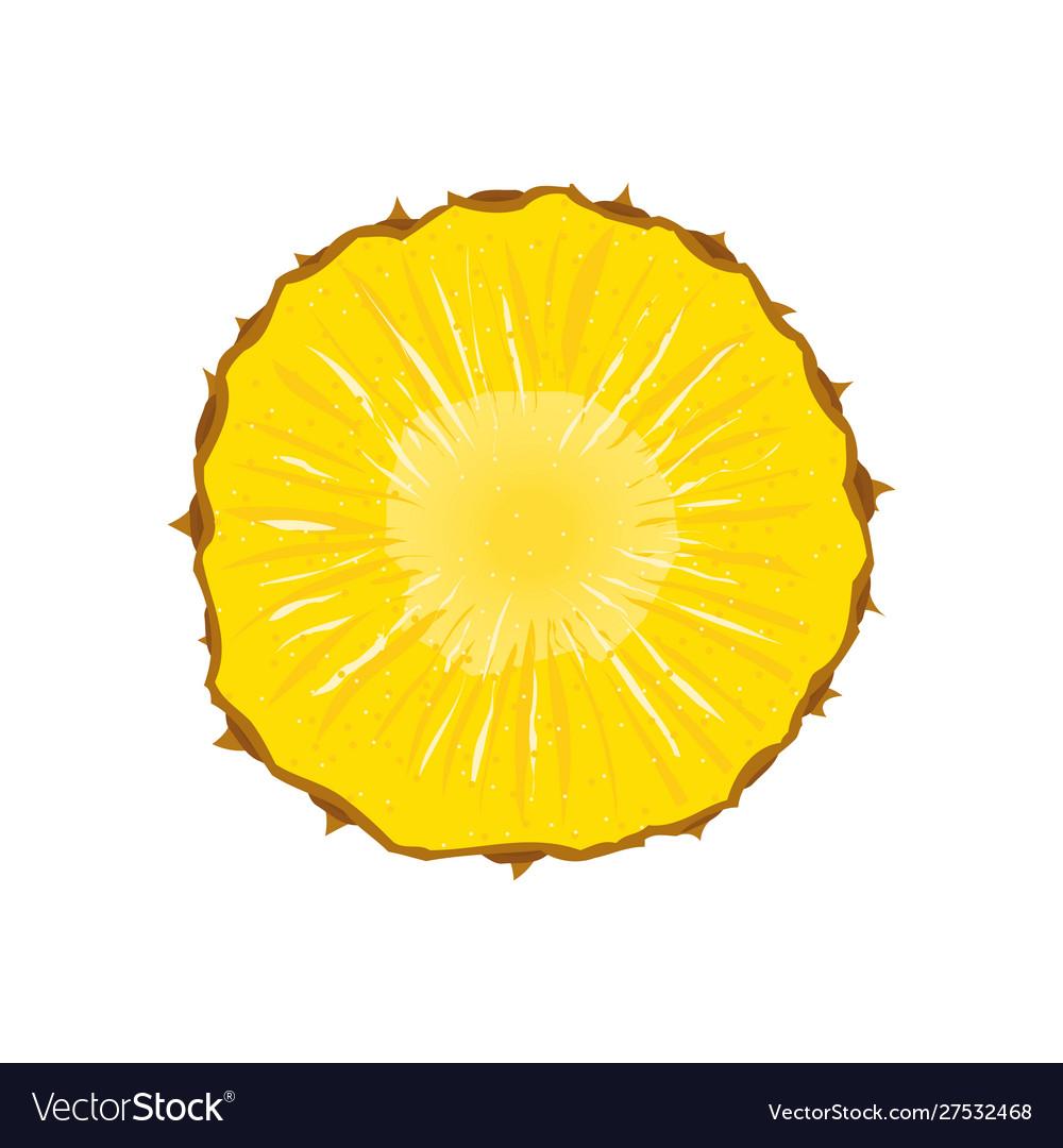 Pineapple slice fruit