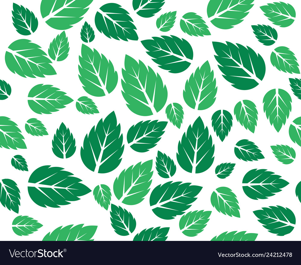 Mint fresh leaves template