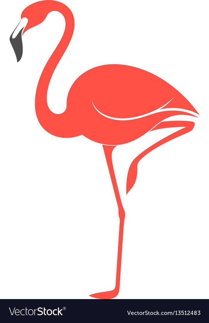 pink flamingo royalty free vector image vectorstock