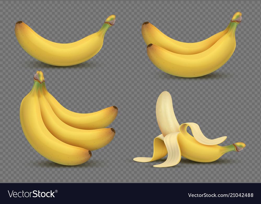 Realistic yellow banana bananas bunch 3d