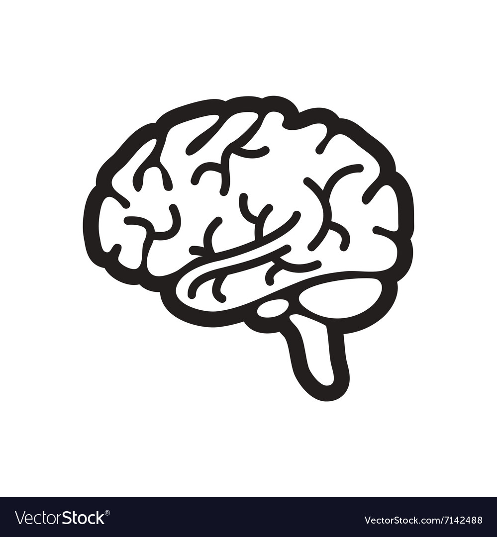 stylish black and white icon human brain vector image rh vectorstock com brain vector art brain vector illustration