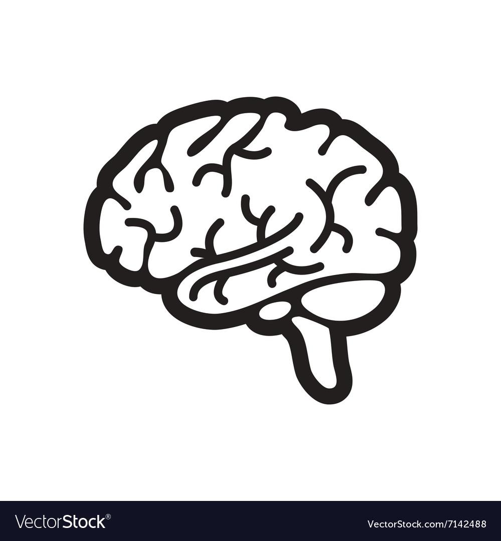 stylish black and white icon human brain vector image rh vectorstock com brain vector file brain vector image