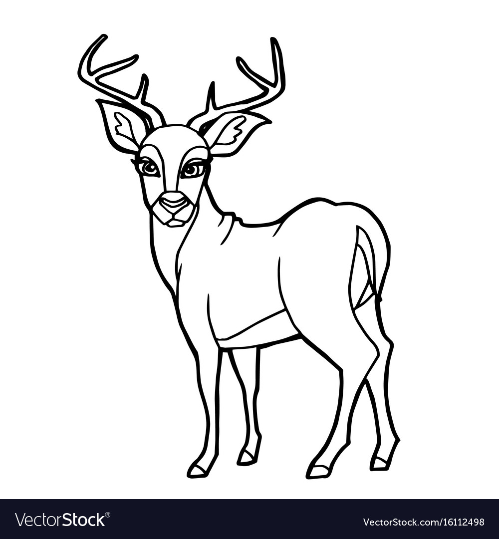 Cartoon cute deer coloring page