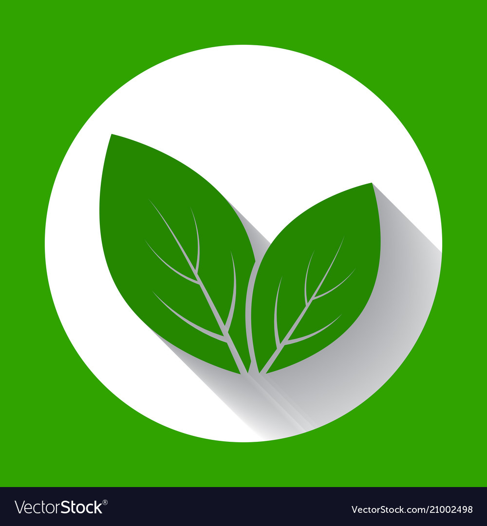 Leaves icons leaf icon with long shadow flat vector image