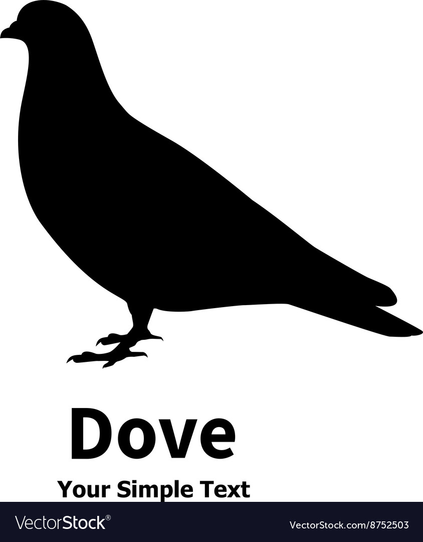 Isolated silhouette of the bird dove