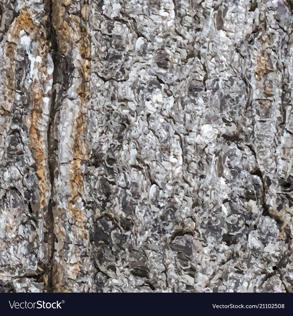 Seamless texture of a bark of a trunk of a spruce