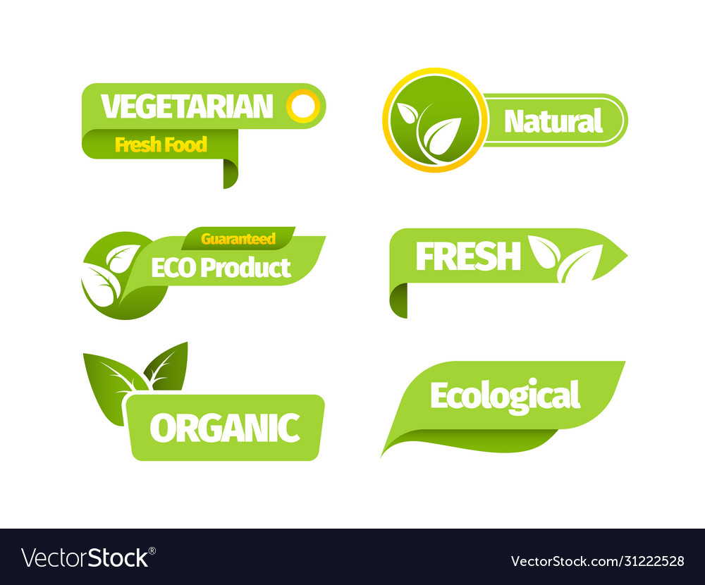 Organic vegetarian banner set natural organic vector