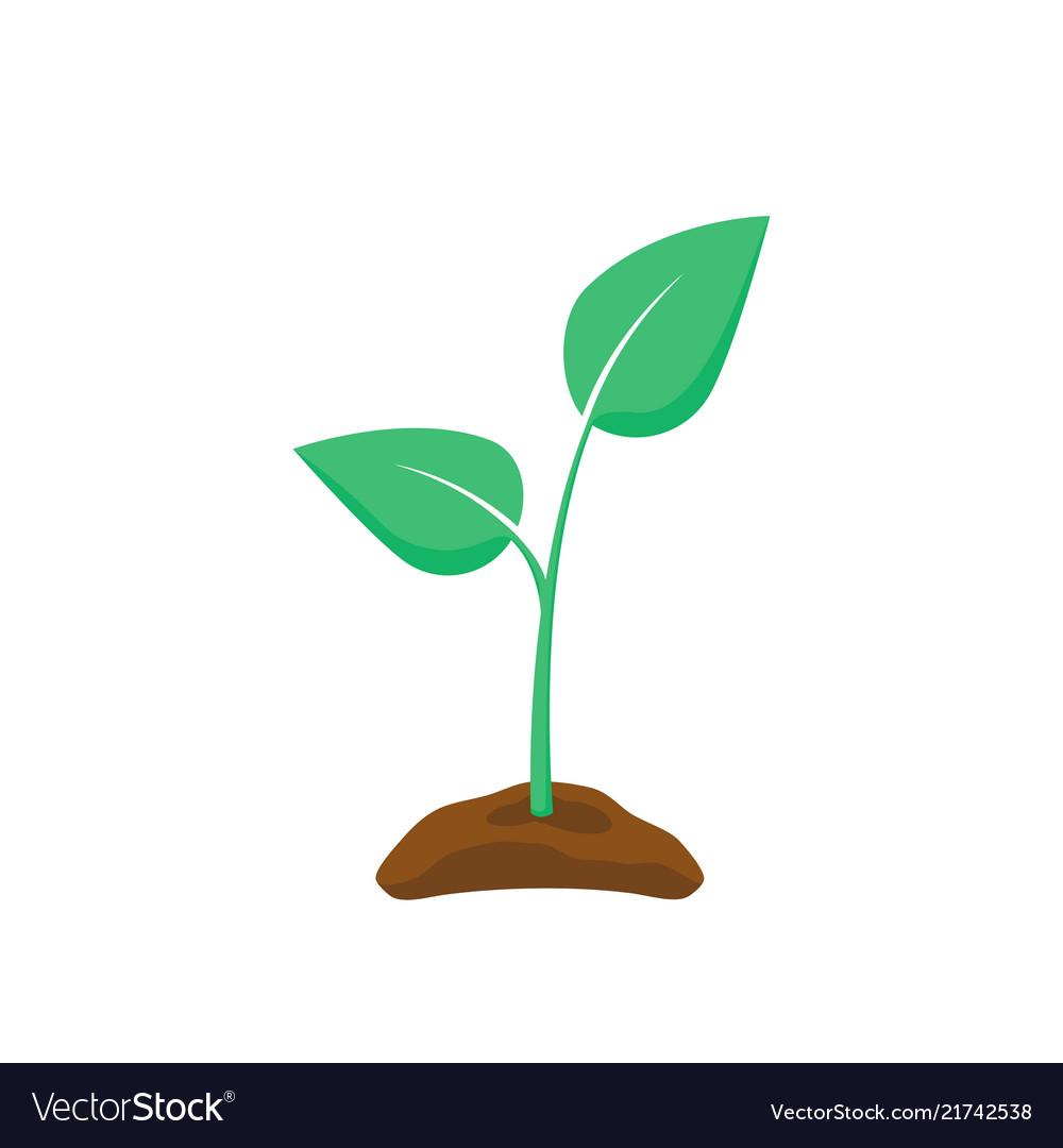 Green seedling silhouette plant nurturing