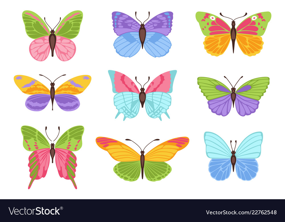 Watercolor colors butterflies isolated on white
