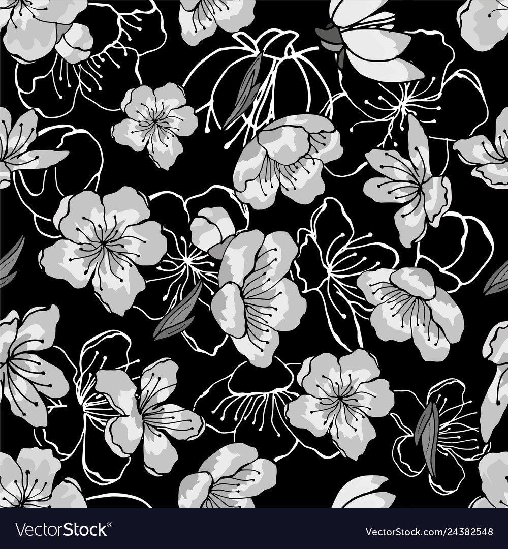 White Gray Black Cherry Flowers In Oriental Vector Image
