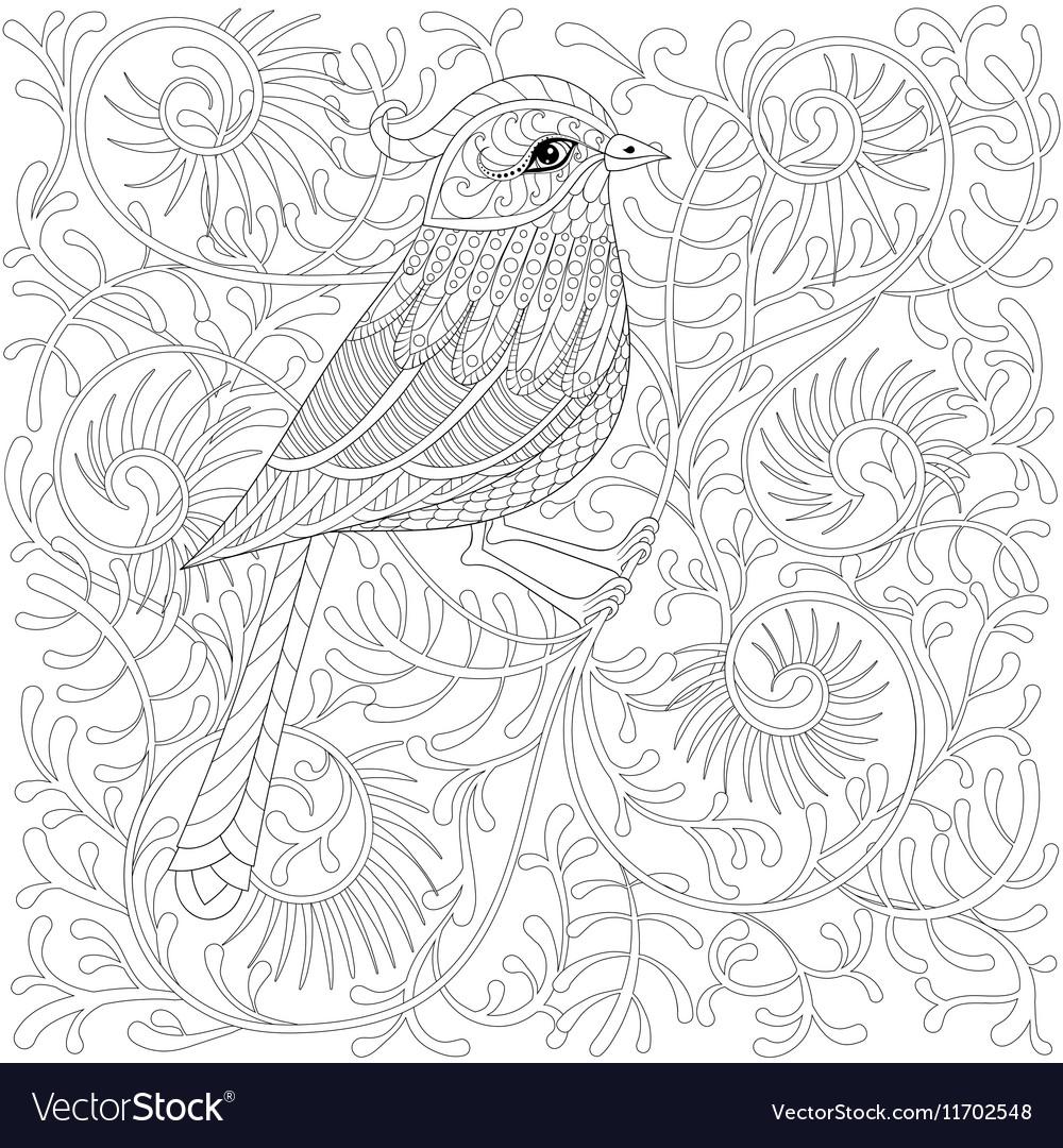 Zentangle Bird Cartoon exotic and tropical vector image