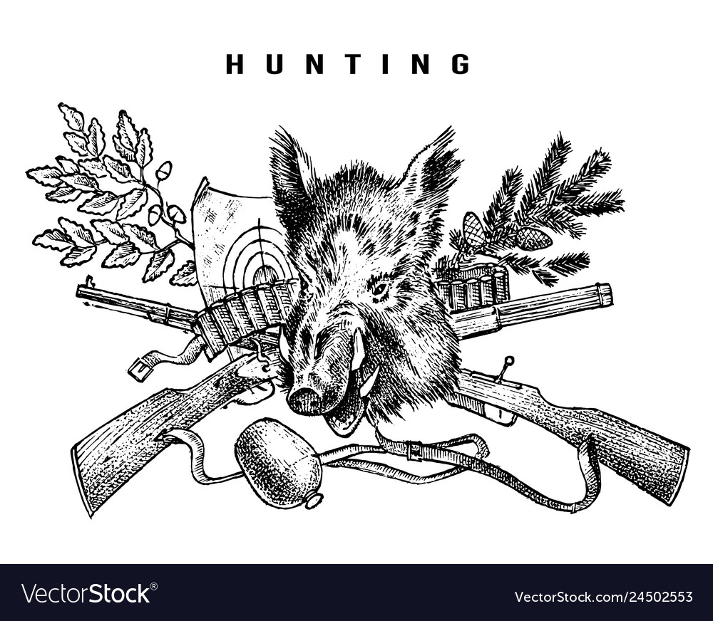 Hunting club banner boar and rifle background