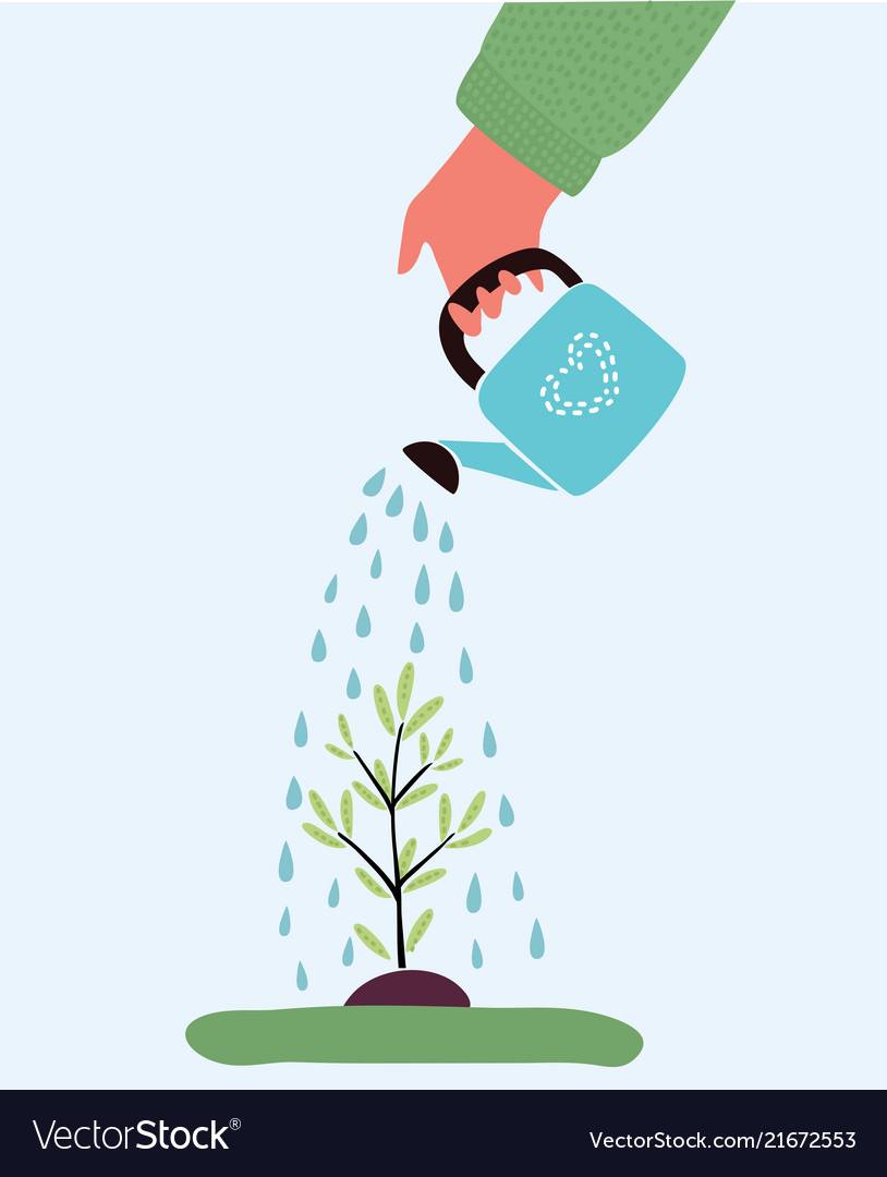 Watering plant with watering can