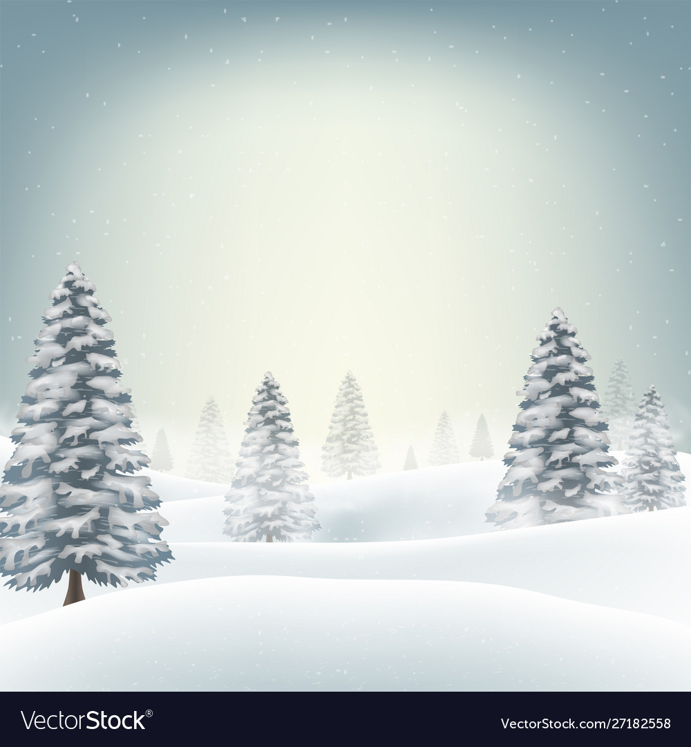 A Christmas Snow.Christmas Snow Field With Tree Background