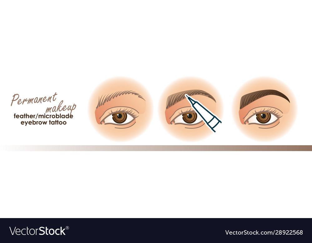 Eyebrow Permanent Makeup Tattoo Royalty