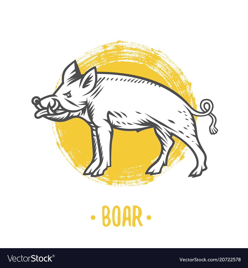 Heraldic shields with boar vector image