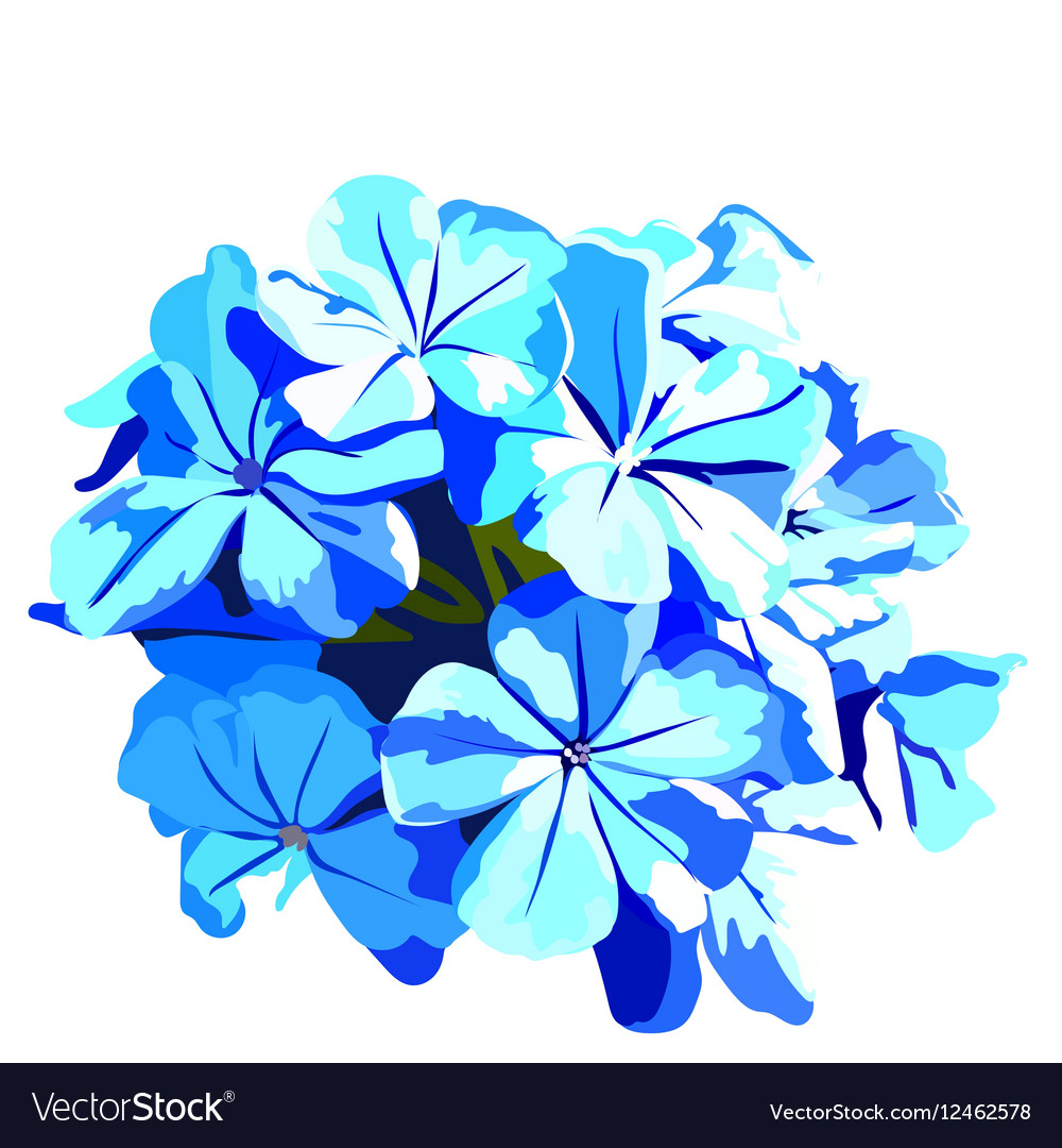 Watercolor blue flowers bouquet royalty free vector image watercolor blue flowers bouquet vector image izmirmasajfo