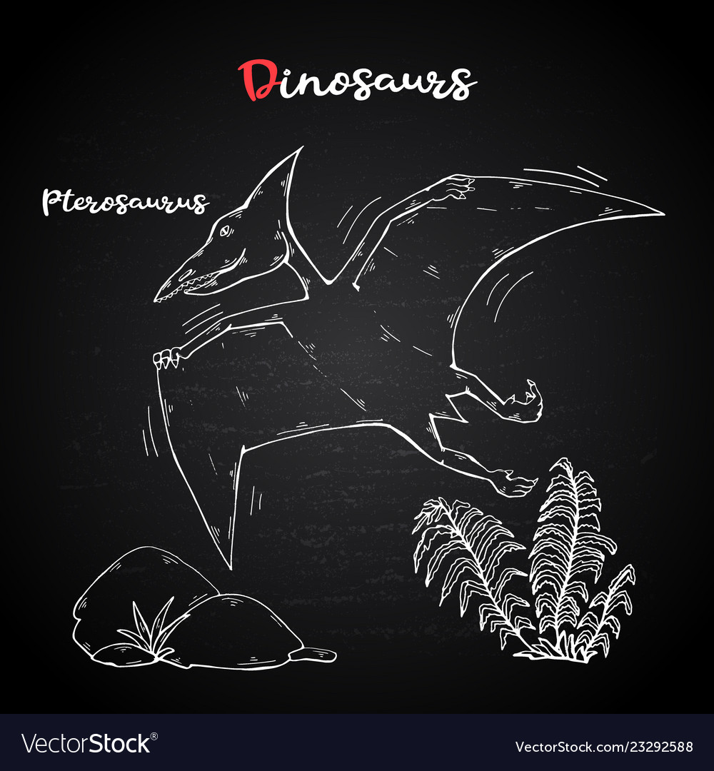 Pterosaur with plant and stone on chalk