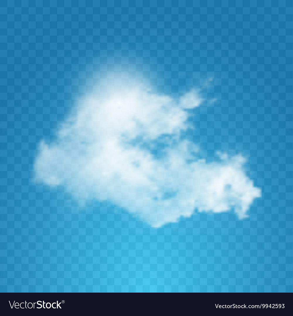 Realistic cloud on transparent background vector image