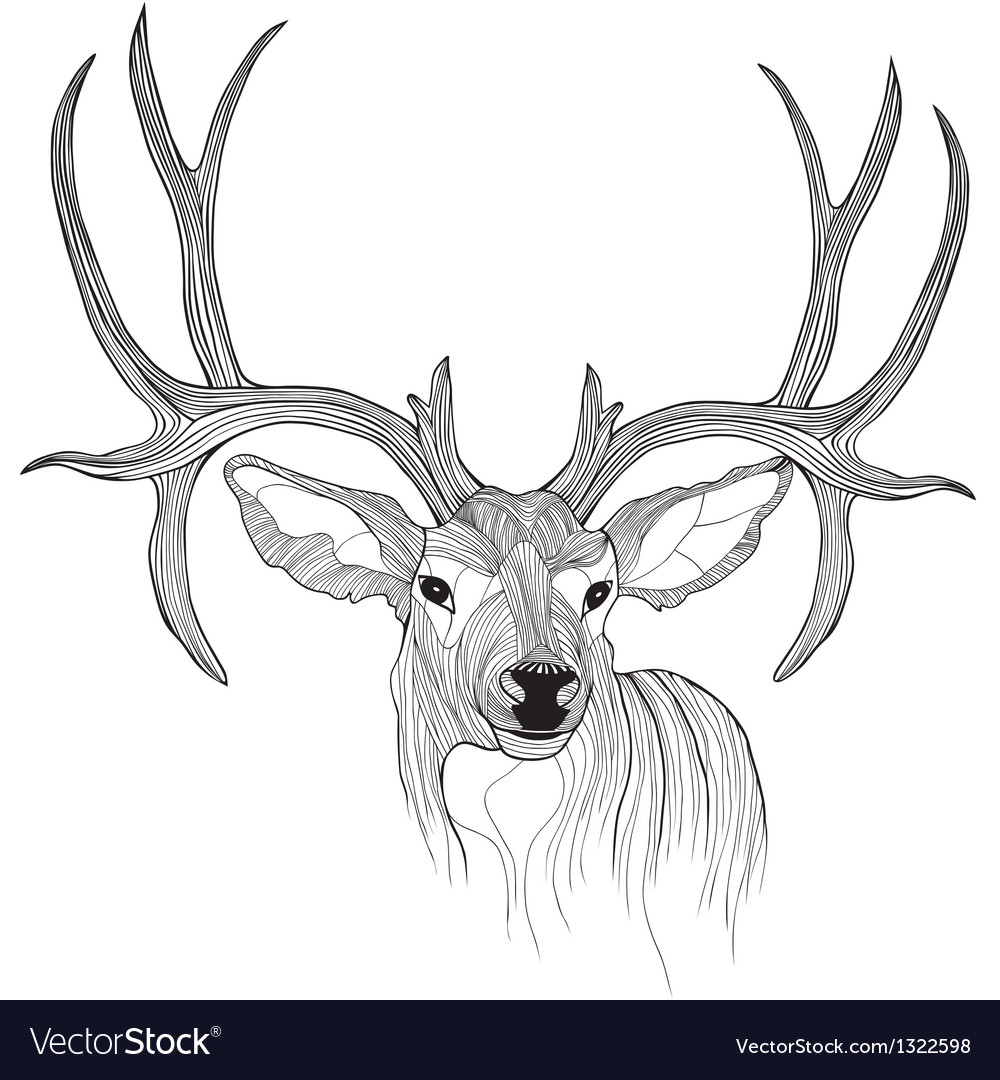 Deer head animal for t-shirt Sketch tattoo design