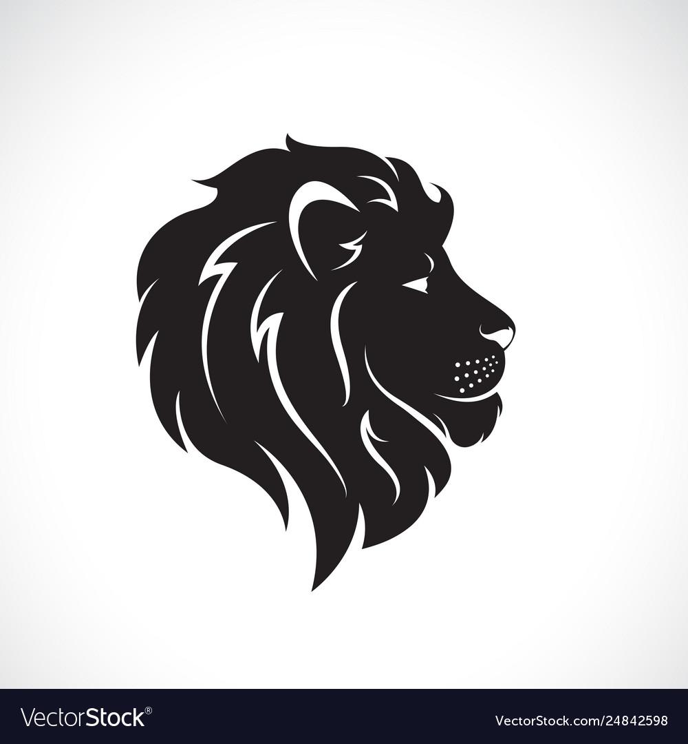 Male lion head design on a white background wild