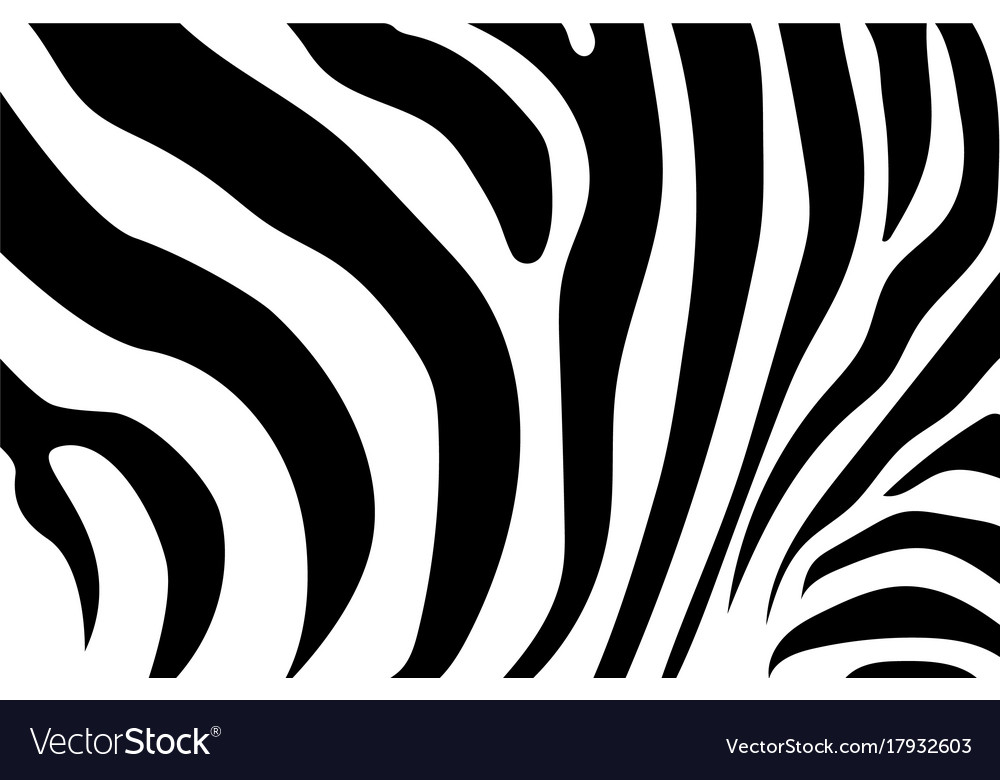 Abstract background skin of a zebra white