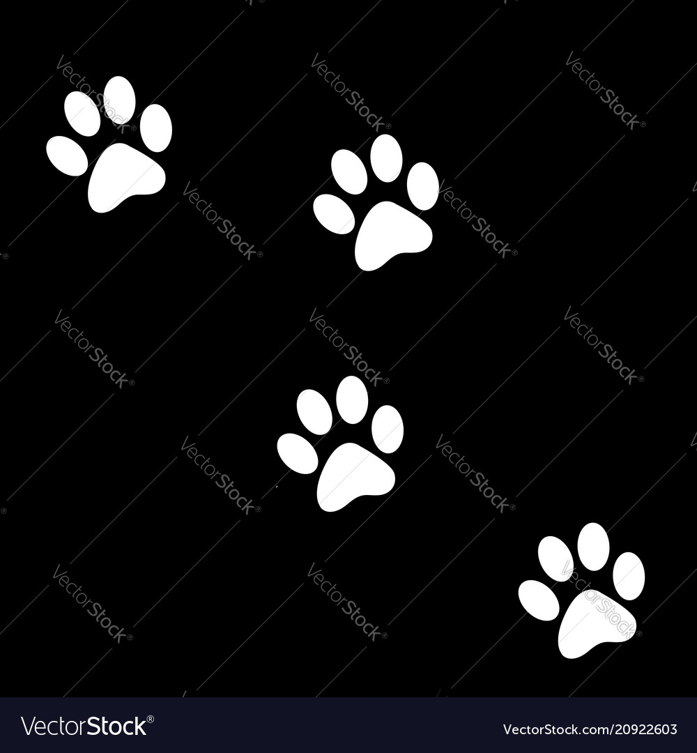 Animals footprints great for any useanimals