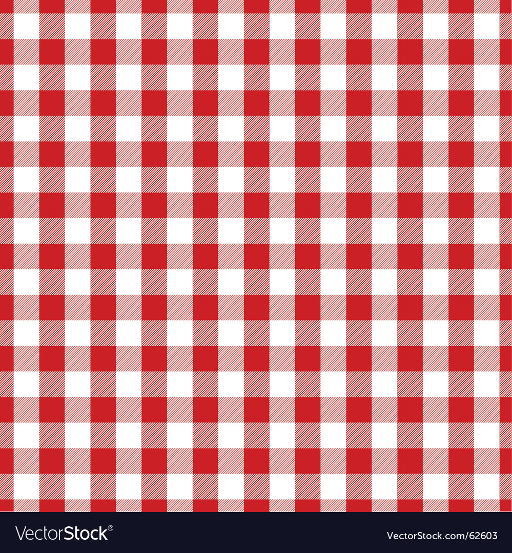 Gingham Fabric Royalty Free Vector Image Vectorstock
