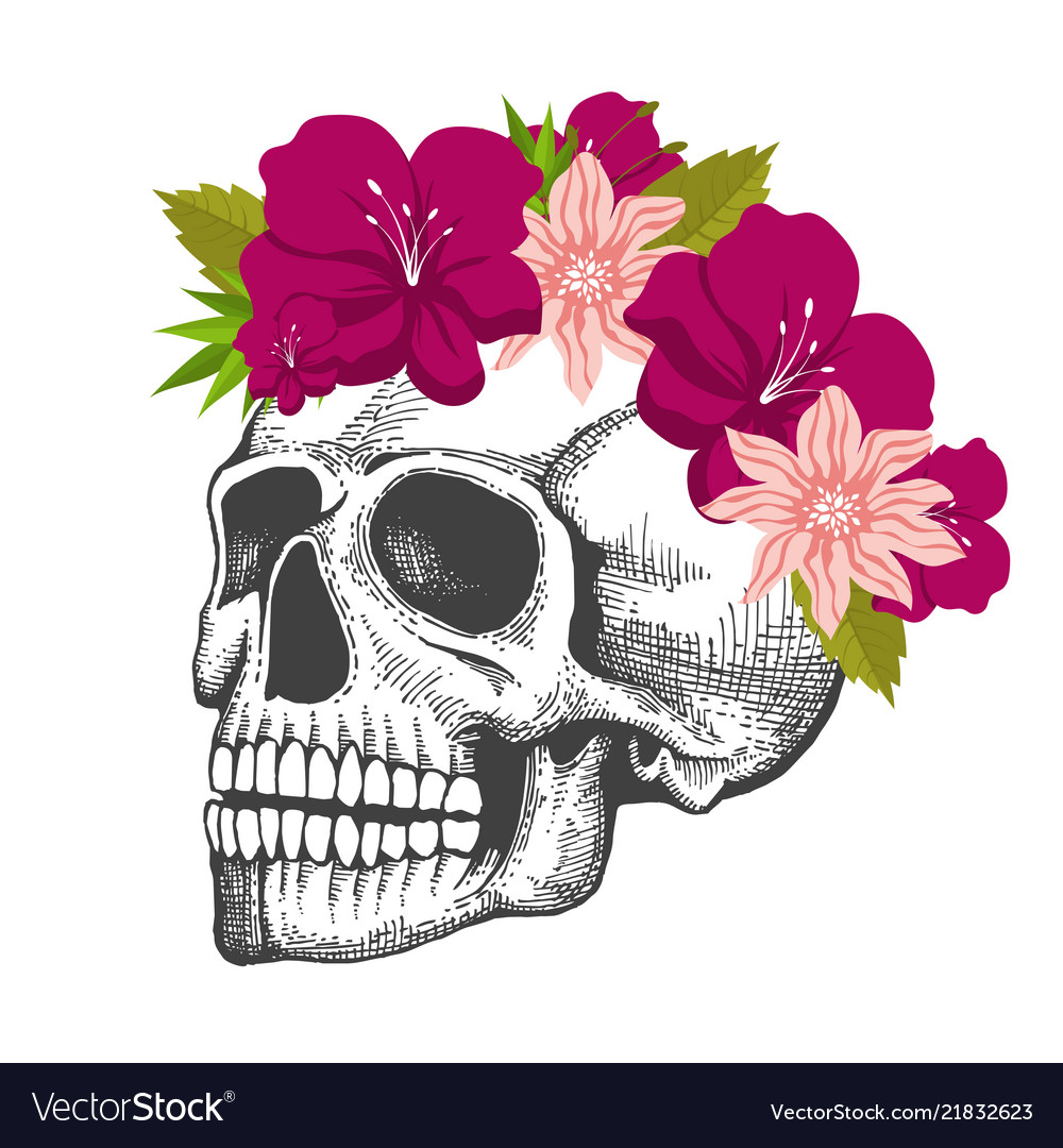 Human skull sketch with floral wreath isolated on