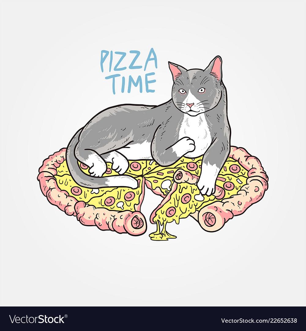Cat pizza sleep