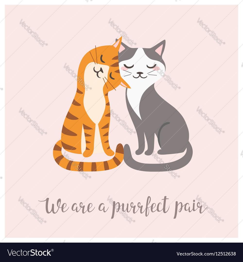 Purrfect pair