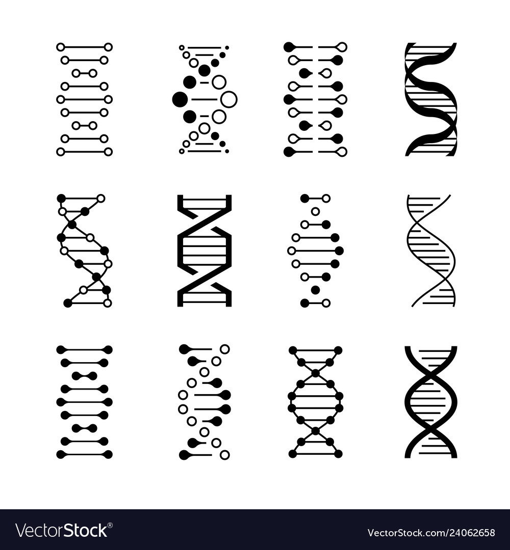 Dna icons genetic structure code dna molecule