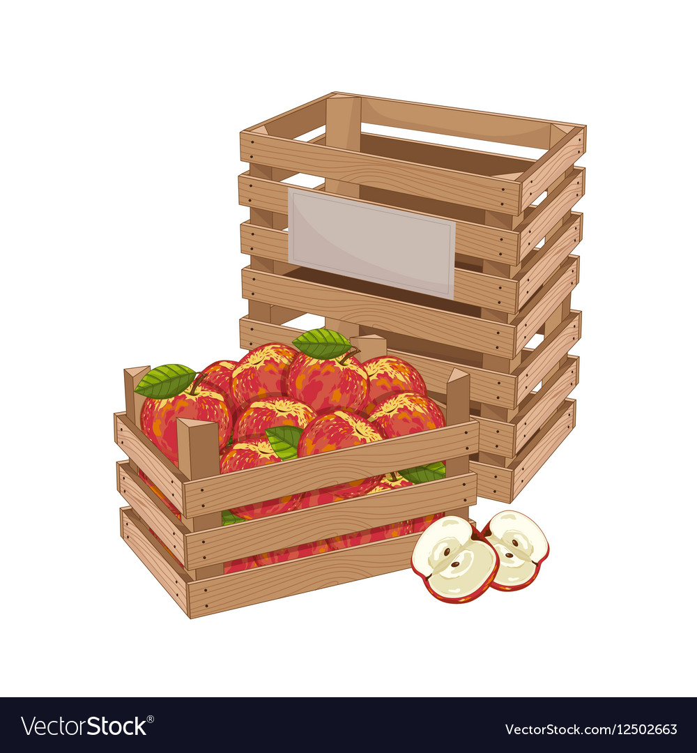 Wooden box full of apple isolated vector image