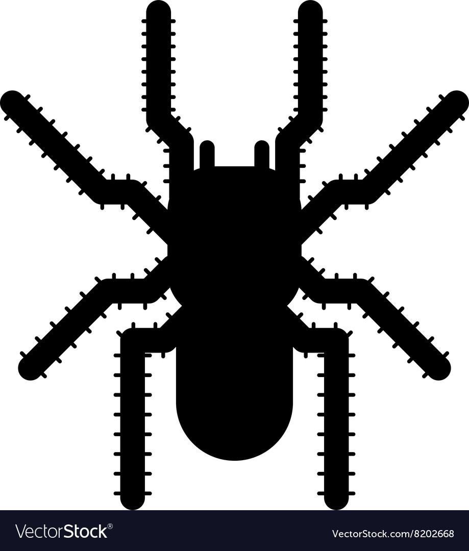 Black spider insect danger silhouette icon vector image