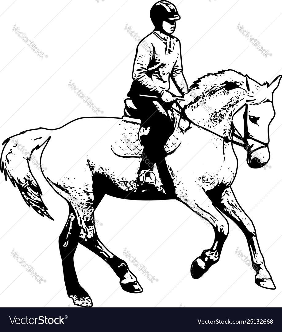 Horse riding sketch