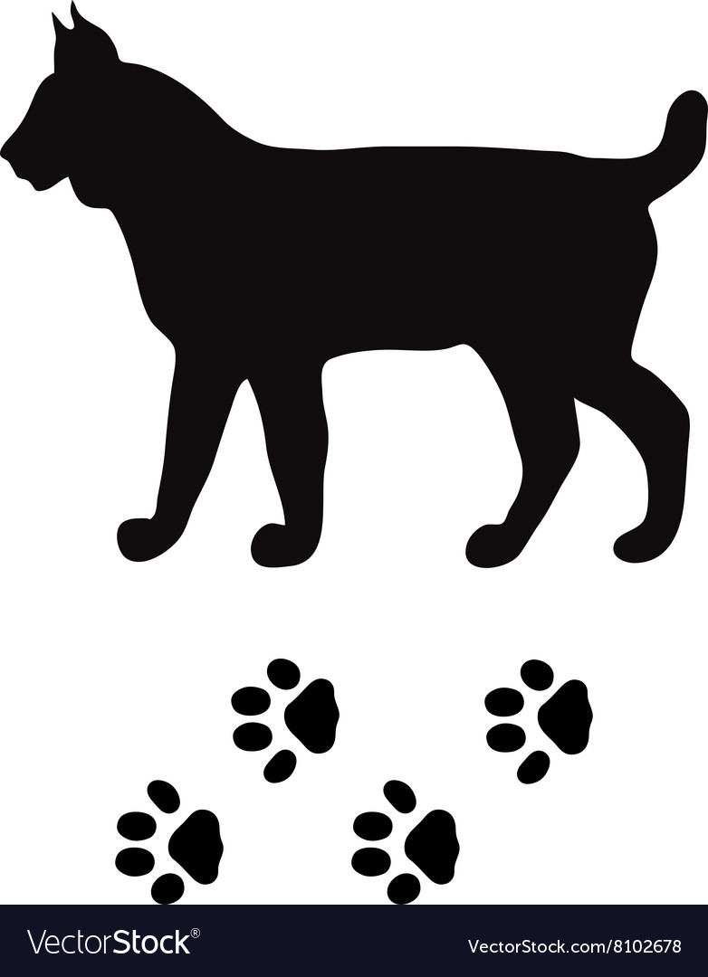 Black silhouette lynx cat wild animal zoo vector image
