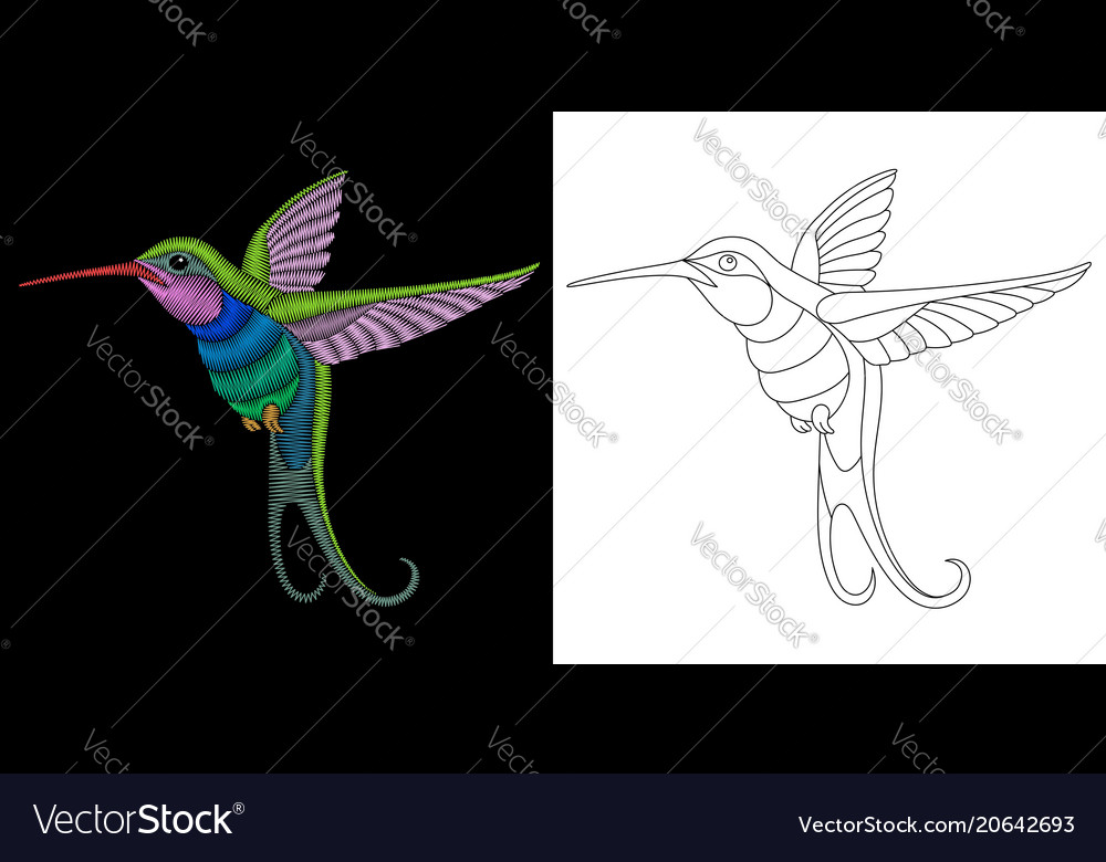 Embroidery Hummingbird Design Royalty Free Vector Image