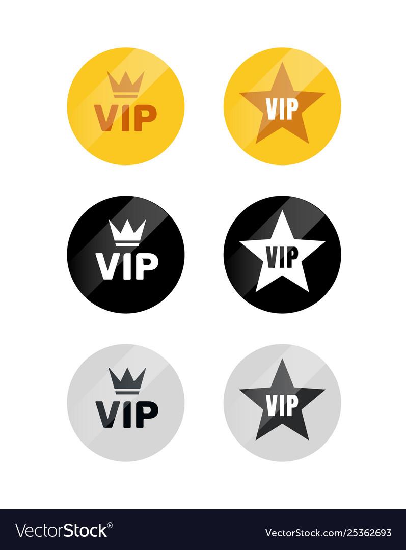Vip label or tag golden silver design badge