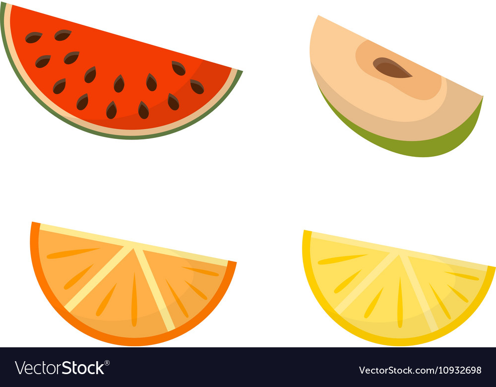 Fruit slices set vector image
