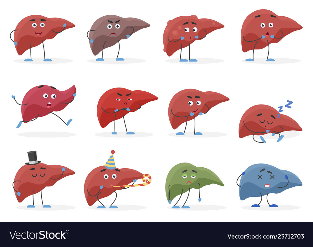 Cute liver positive and negative emotions organs